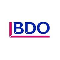 Логотип компании «BDO в Беларуси»