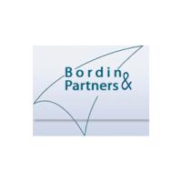 Логотип компании «Bordin&Partners»