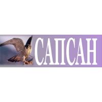 Логотип компании «Сапсан»