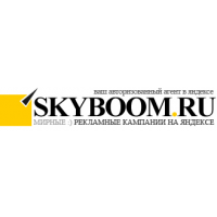 Логотип компании «Skyboom.ru»