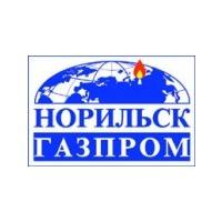 Логотип компании «Норильскгазпром»