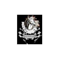 Логотип компании «Конный клуб Форсаж»