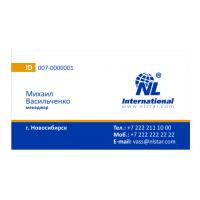 Логотип компании «NLinternational»