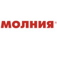 Логотип компании «Молния»