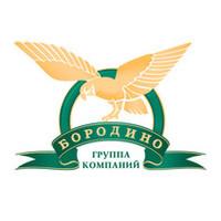 ГК «Бородино»