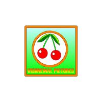 Логотип компании «Vishnemal Pictures»
