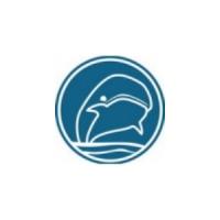 Логотип компании «Умный Кит»
