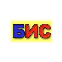 Логотип компании «Бюджетные ИнфоСистемы»