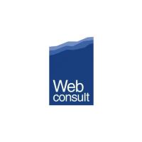 Логотип компании «web-consult»