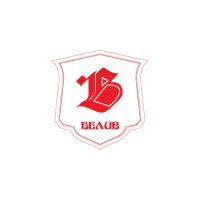 Логотип компании «Белив»