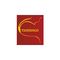 Логотип компании «Тиоиндиго»