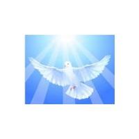 Логотип компании «Психологический Центр Татьяна»