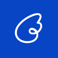 Логотип компании «NetAngels»