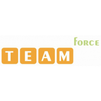 Логотип компании «Team Force»