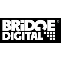 Логотип компании «Бридж Диджитал»