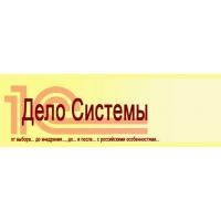 Логотип компании «Дело Системы»