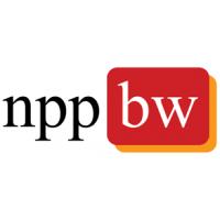 Логотип компании «НПП Брэйн Ворк»