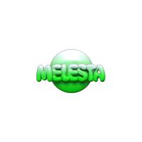 Логотип компании «Частное предприятие «Мелсофт»»
