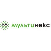 Логотип компании «Мультинекс»