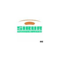 Логотип компании «Сибур - Русские шины»