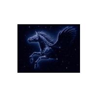 """Логотип компании «ООО """"Ригель""""»"""