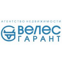 Логотип компании «Велес-Гарант»