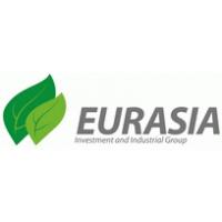 Логотип компании «ИПГ Евразия»