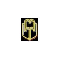Логотип компании «Майкопский государственный технологический университет (МГТУ)»