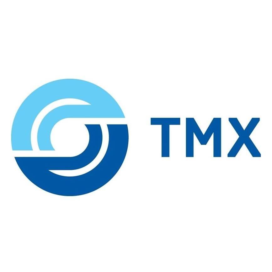 Логотип компании «Трансмашхолдинг»