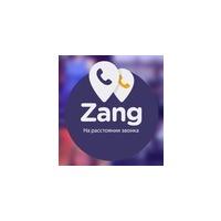 Логотип компании «Zang»