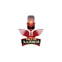 Логотип компании «Снежинская Сеть Стационарных Радиостанций»