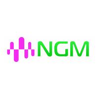 Логотип компании «NGM»