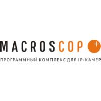 Логотип компании «MACROSCOP»