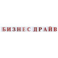 Логотип компании «Бизнес Драйв»