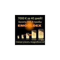 Логотип компании «Бизнес Еmgoldex»