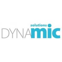 Логотип компании «Dynamic Solutions»