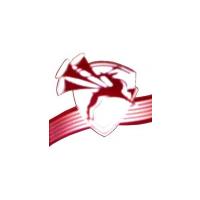 Логотип компании «Ансамбль песни и пляски ПривО ВВ МВД РФ»