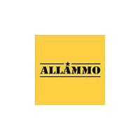 Логотип компании «Интернет-магазин Allammo.ru»