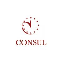 Логотип компании «КОНСУЛ»