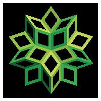 Логотип компании «Any Void»