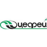 Логотип компании «Цефей»