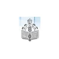 Логотип компании «Брянская государственная сельскохозяйственная академия»