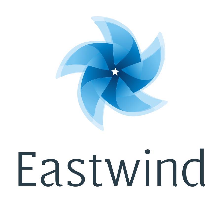 Логотип компании «Eastwind»