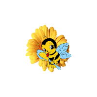 Логотип компании «Веб-студия Maya»