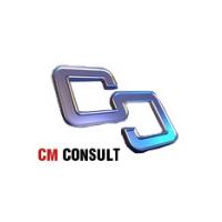 Логотип компании «СМ-Консалт»