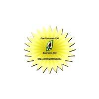Логотип компании «БиоТопливо XXI»