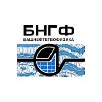 Логотип компании «Башнефтегеофизика»