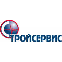Логотип компании «СТРОЙСЕРВИС»