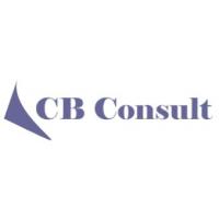 Логотип компании «CB Consult»