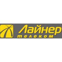 Логотип компании «Ижевские сетевые технологии»